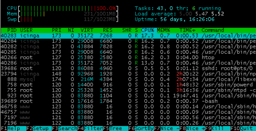 htop / © Maximilian Riess / Riess Group.