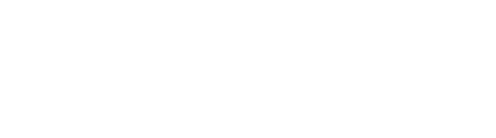 Riess Business Group GmbH